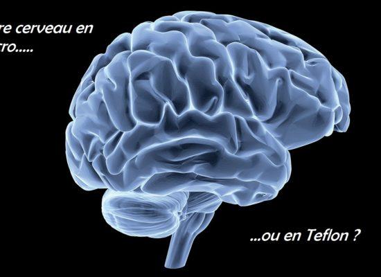 le cerveau et l'apprentissage